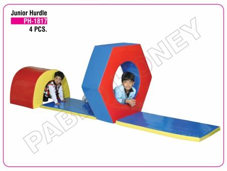 Junior Hurdle Delhi NCR