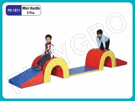 Mini Hurdle Delhi NCR