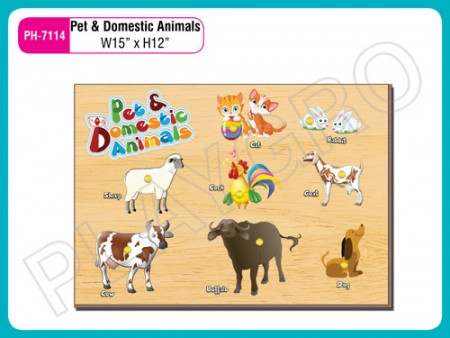 Pet & Domestic Animals Activity Toys Delhi NCR