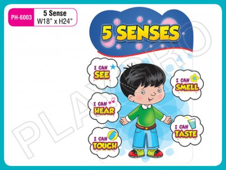 Wall Cutouts - 5 - Senses Activity Toys Delhi NCR
