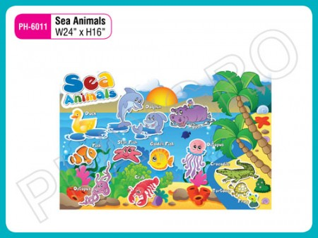 Wall Cutouts - With - Sea - Animals Activity Toys Delhi NCR