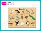 Wooden Activity Tray - Activity Toys in Delhi NCR